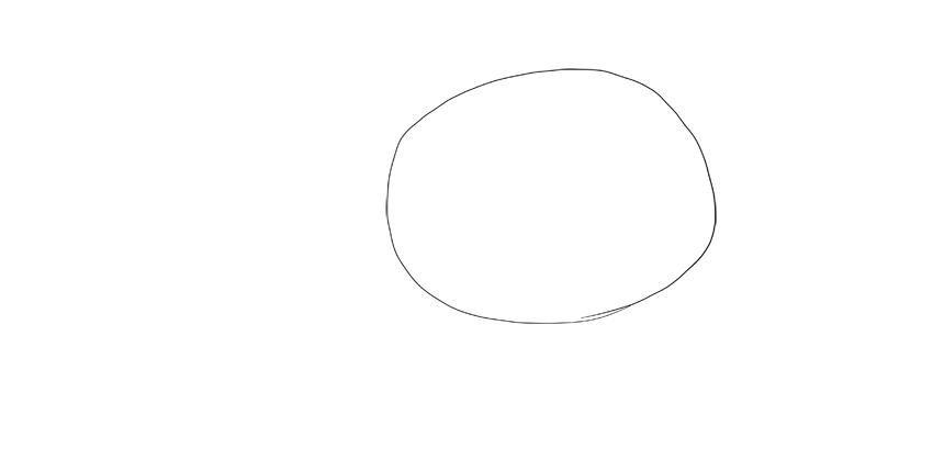 bear drawing torso oval