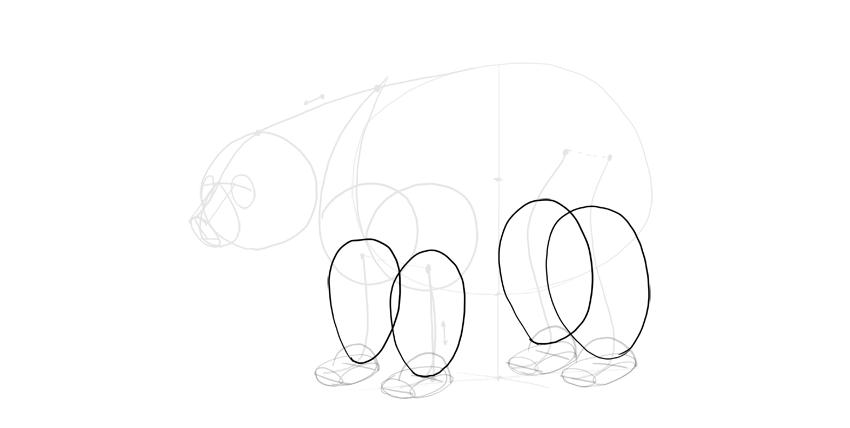bear drawing legs outline