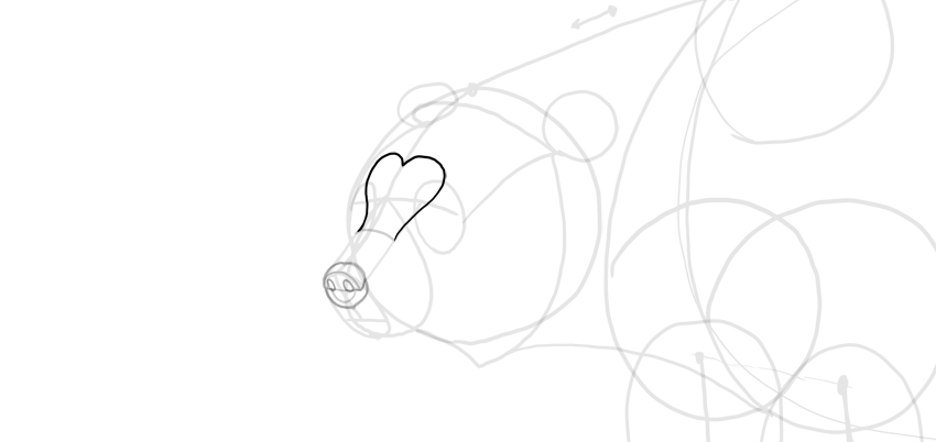 bear drawing forehead heart