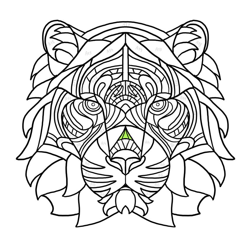 nose triangle
