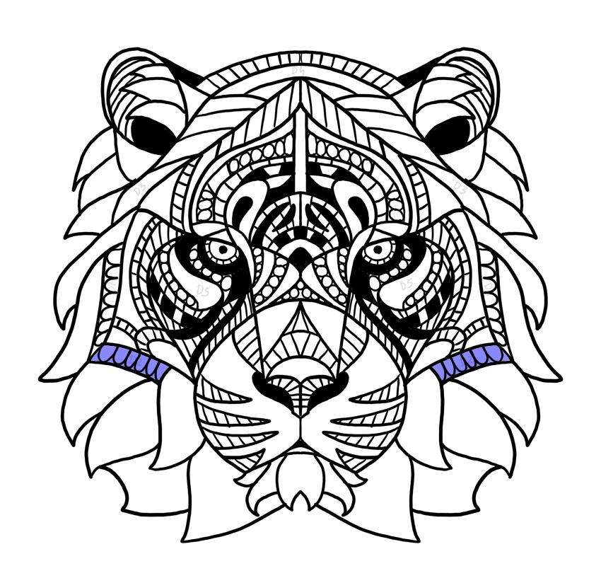 pattern under the cheeks