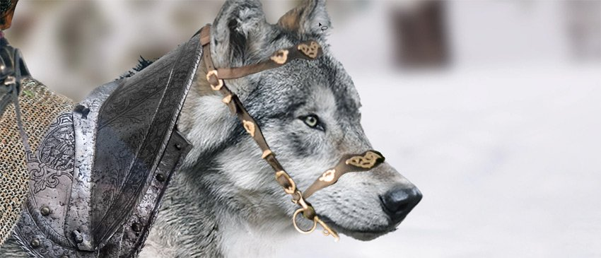 fiorehead part on the wolf