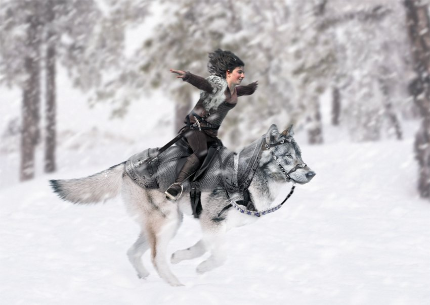 create a fantasy wolf rider photo manipulation