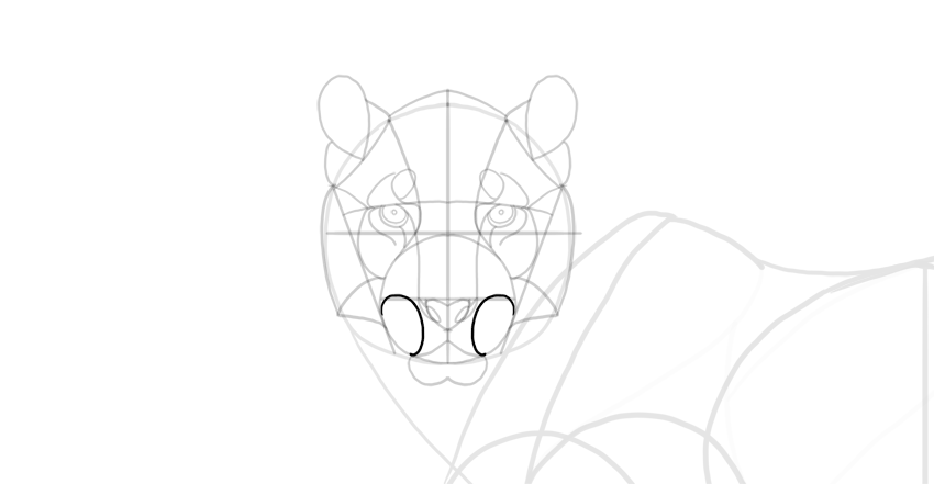 draw the mouth detail
