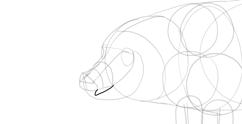 draw pig mouth