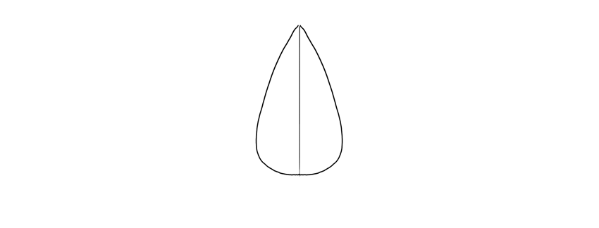 sketch nose in front