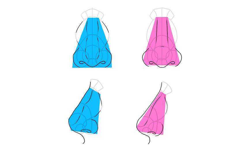 feminine masculine nose