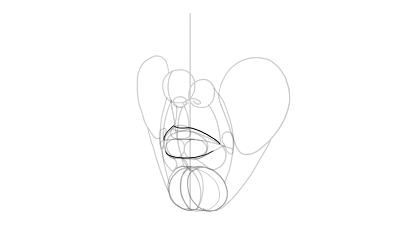lip outline in perspective