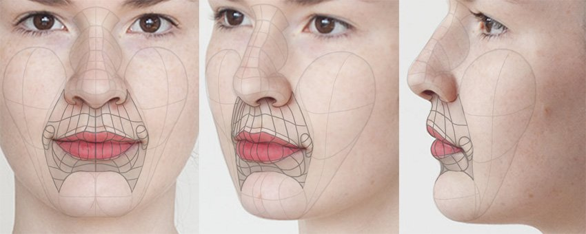 structure of mouth and lips