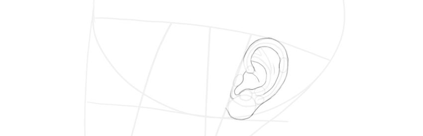 ear side view final lines