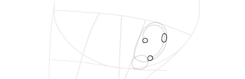 ear side view helix width