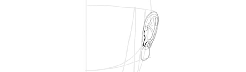 ear front view opening