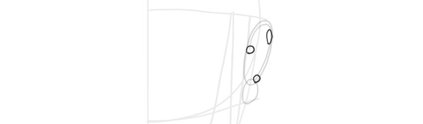 ear front view helix width