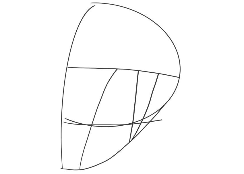 ear in perspective head skull