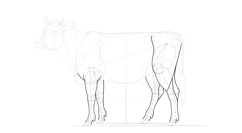 outline cow legs