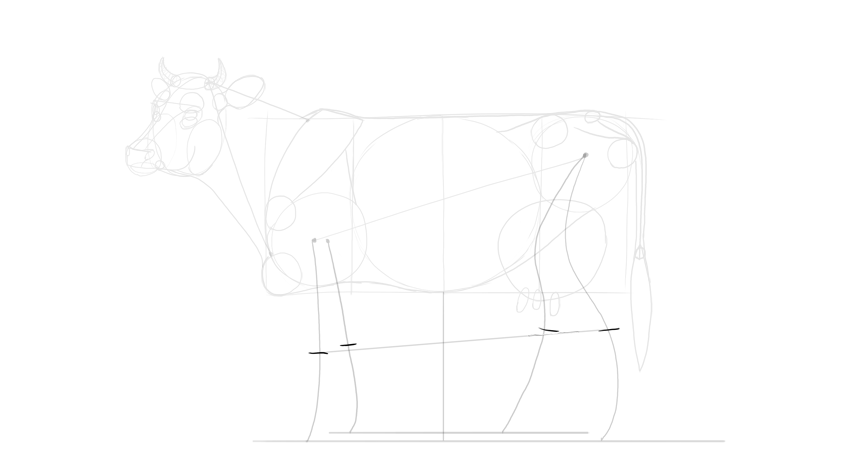 sketch cow wrists and ankles