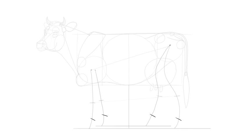 sketch position of hooves