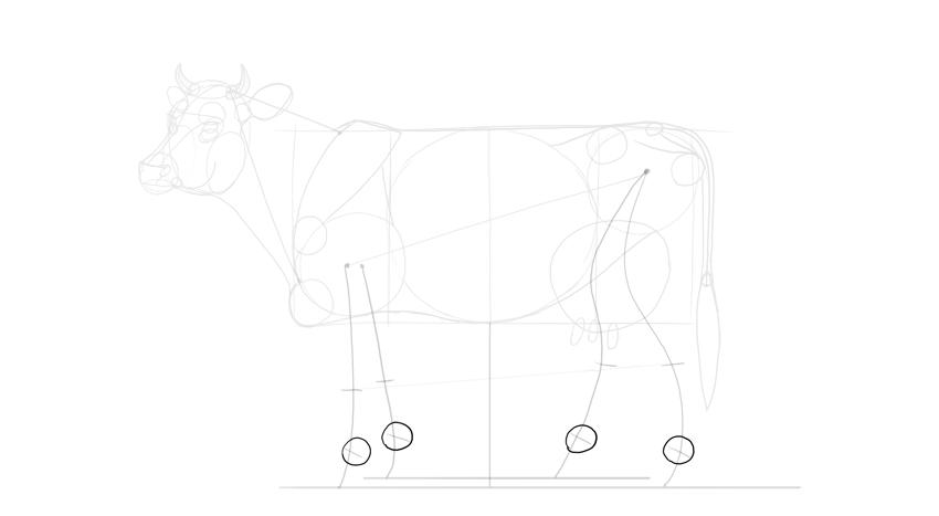 sketch top of hooves