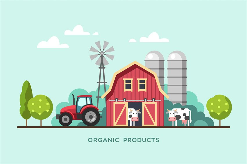 cow vector images illustrations