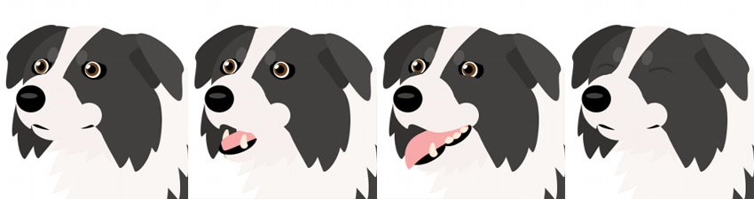 how to create dog facial expressions
