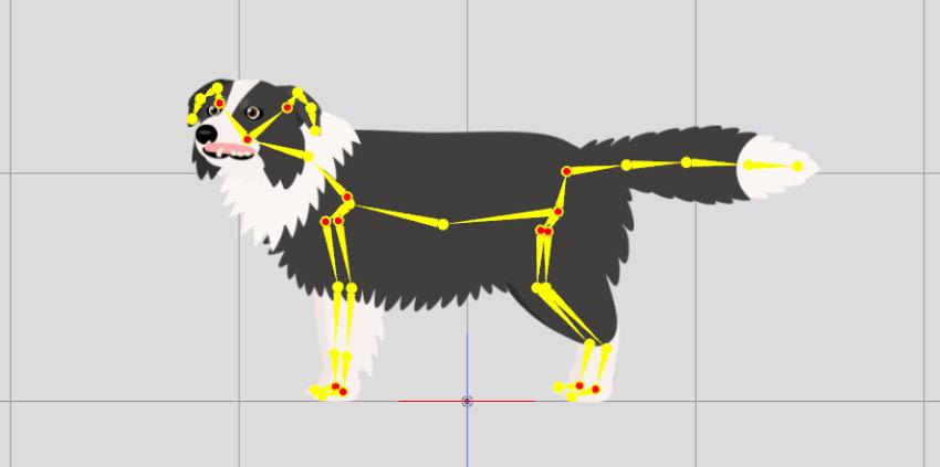 dog added with bones