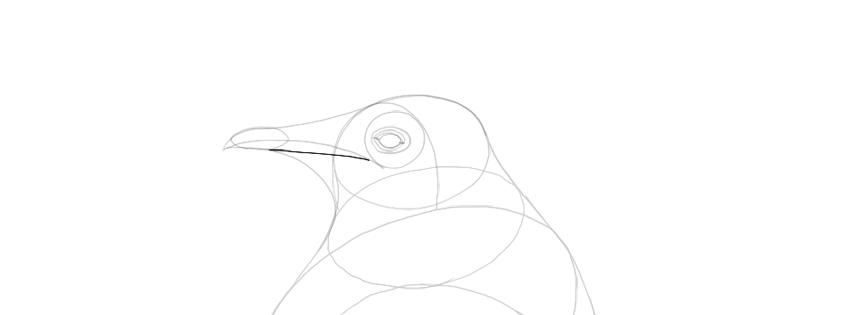 add beak detail