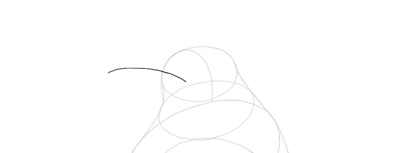 sketch the beak curve