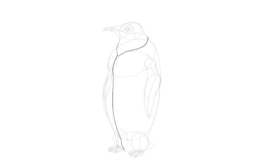 sketch depth of penguin body