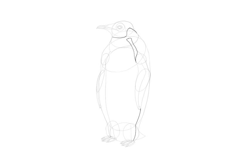 draw emperor penguin pattern