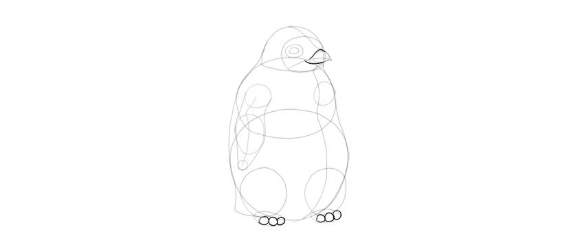 add toes and beak