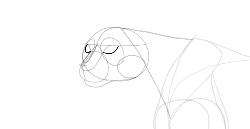 draw area of the eyes
