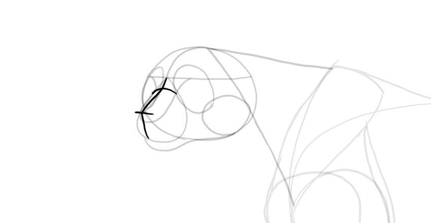 draw cheetah nose