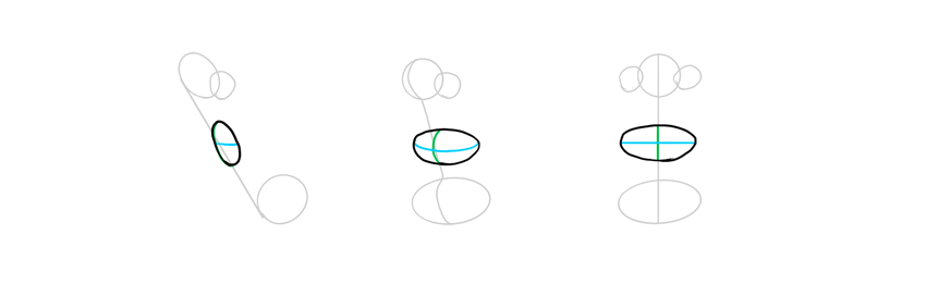 disey lips shape