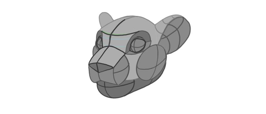 shape of lower jaw