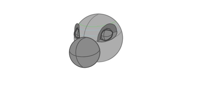 eyelids shape