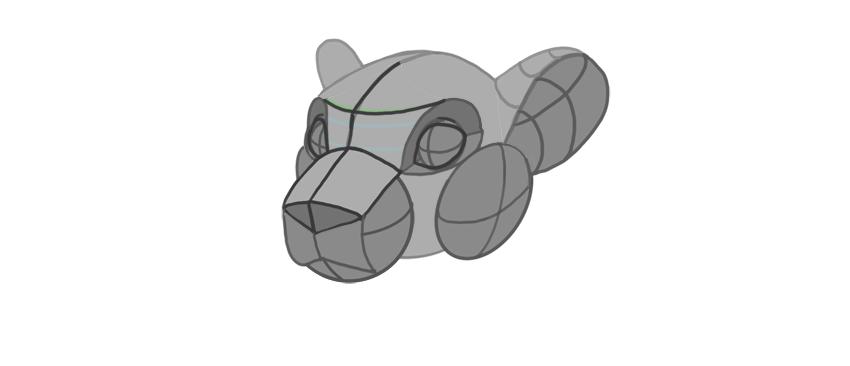 shape of ears