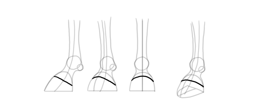draw actual hooves