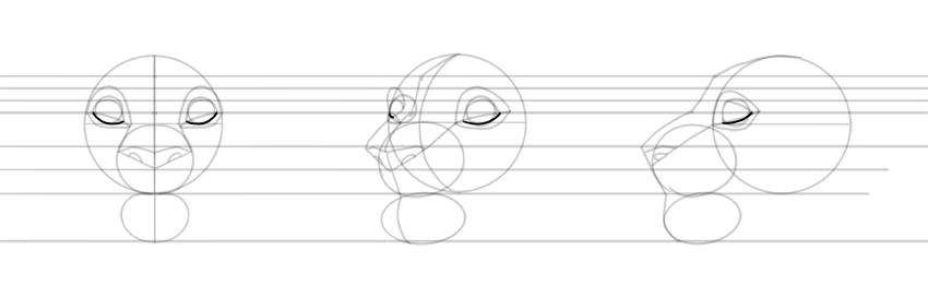 draw lower eyelid