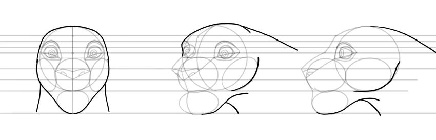 draw lion neck