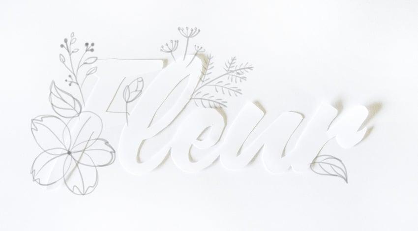 draw skeleton of leaves