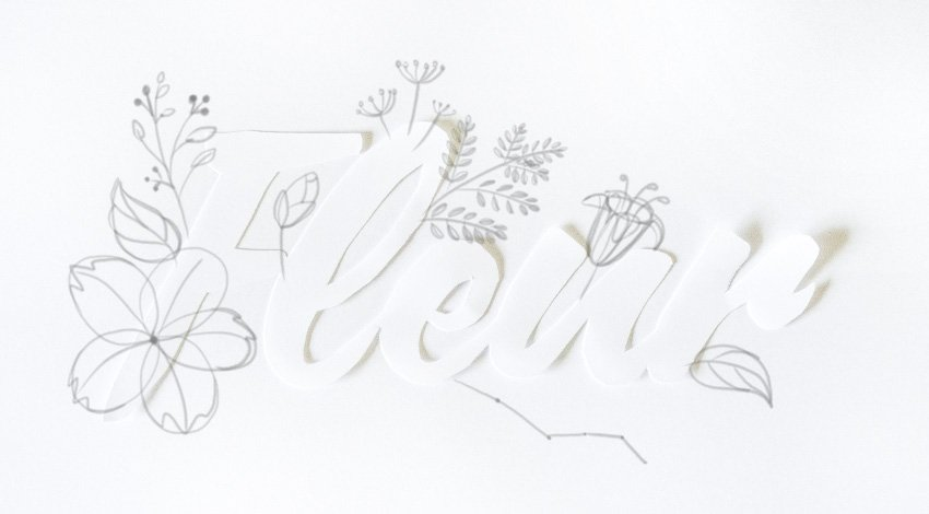 sketch basic branch