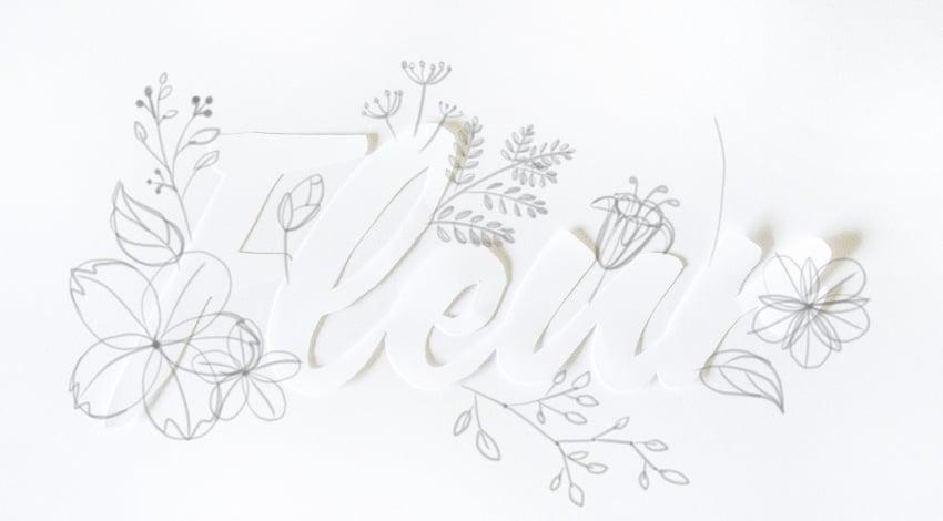 draw rhythm of fern leaf