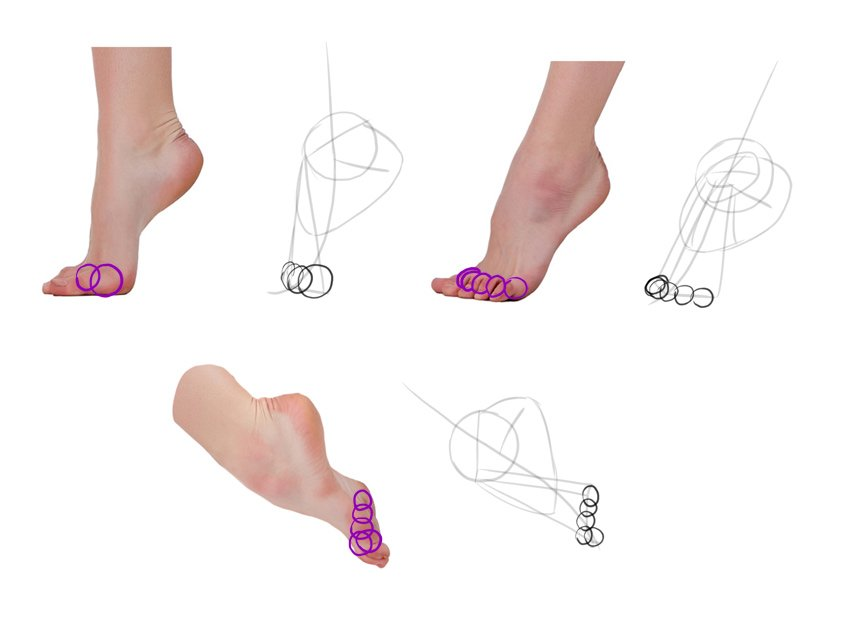 draw base of toes