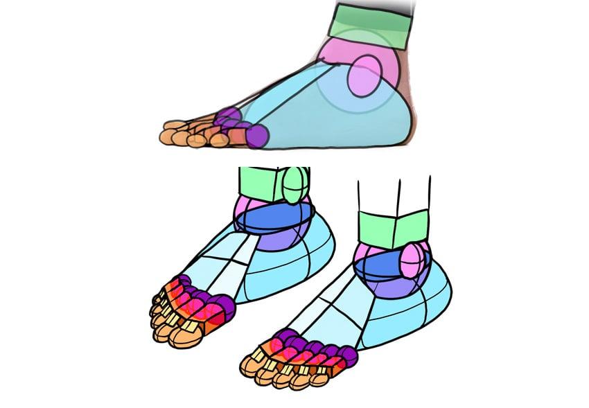 ankle details