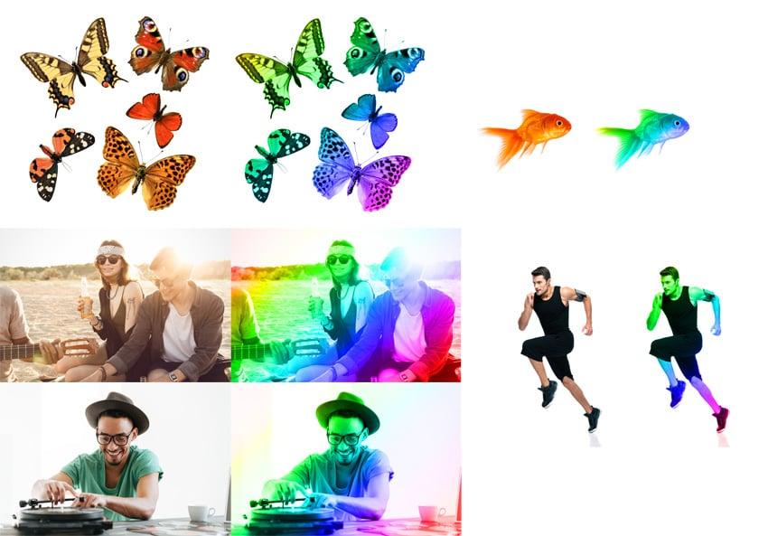 rainbow action examples