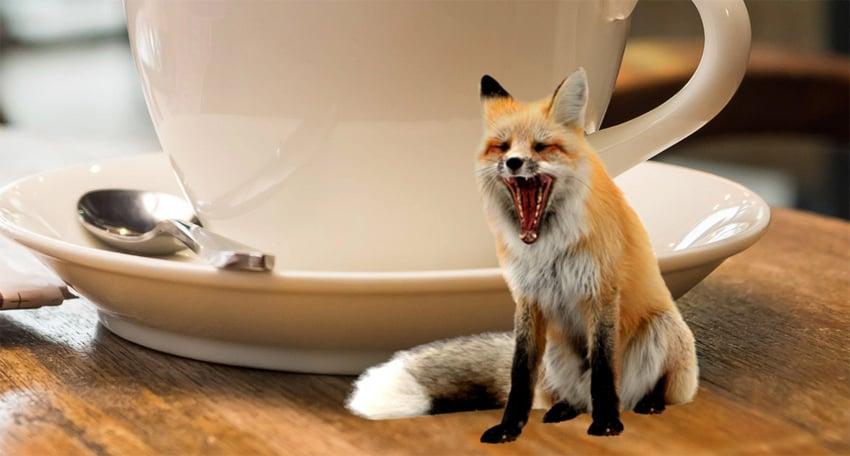 blur the foxx
