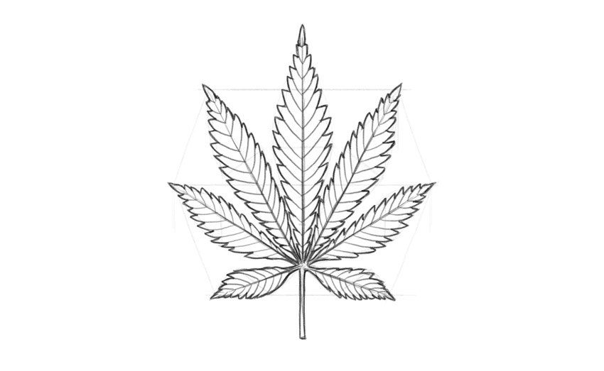 step by step pot leaf drawing