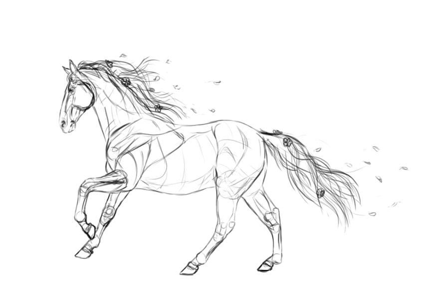 final sketch