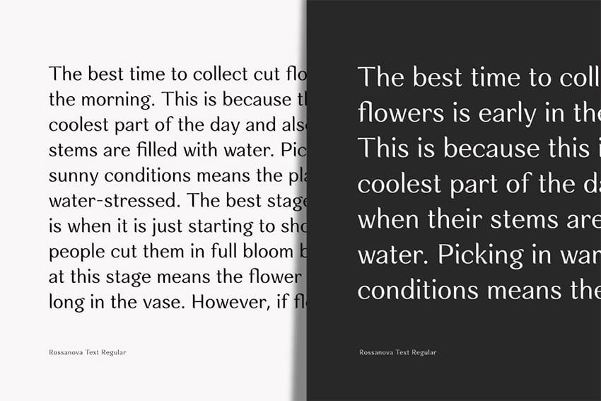 rossanova typeface preety elegant font similar to garamond display large