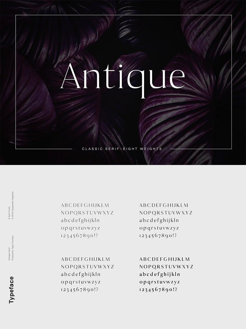 antique luxury font classy serif web font similar to Georgia common font similar to Georgia